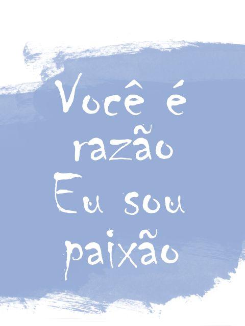 Poster Razão e Paixão