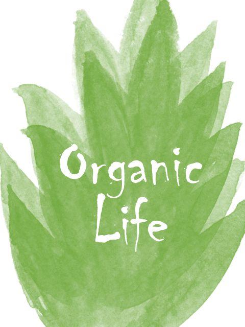 Poster Vida Orgânica