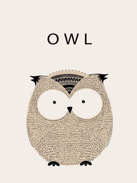Poster Coruja Owl