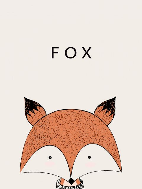 Poster Raposa Fox