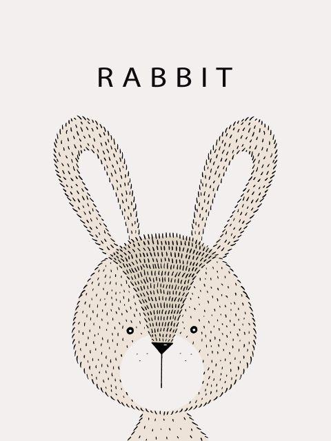 Poster Coelho Rabbit
