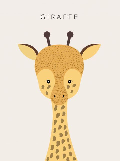 Poster Girafa Giraffe