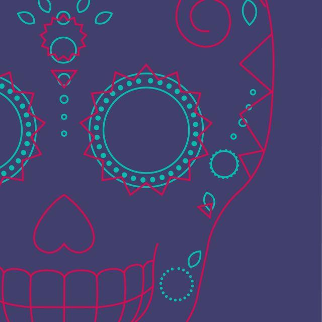 Poster Caveira Rosa