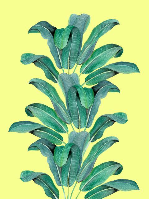 Poster Folhas tropicais II   amarelo