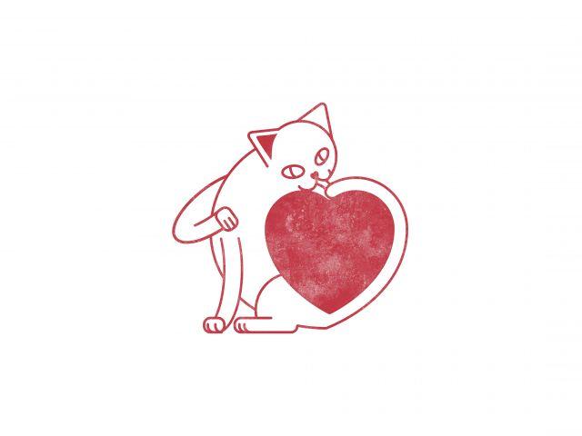 Poster O Amor é Simples   gato