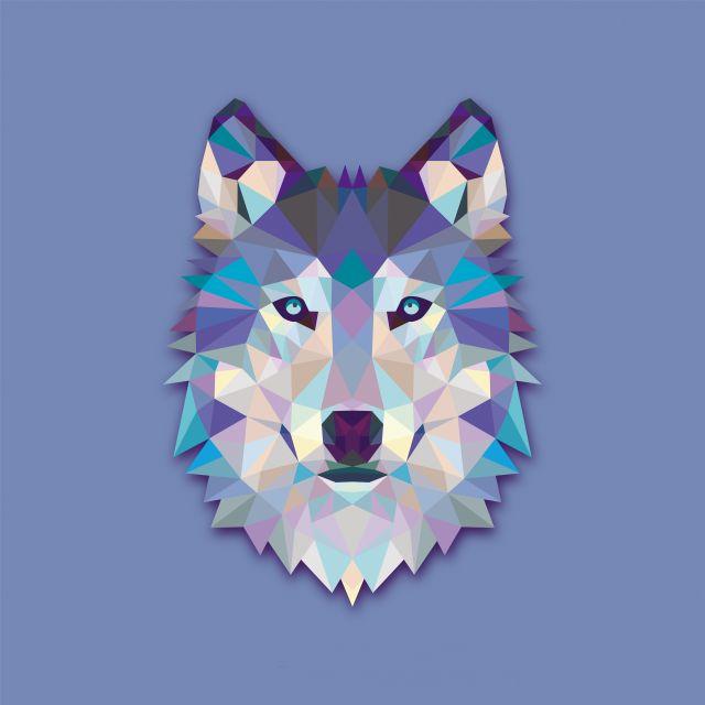 Poster Lobo Wolf