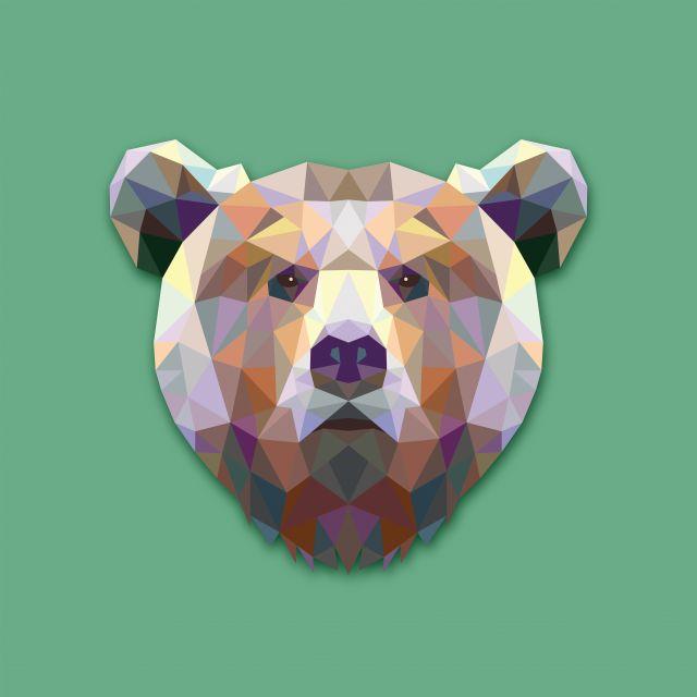 Poster Urso Bear
