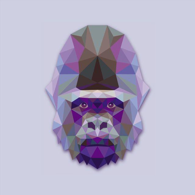 Poster Gorila Gorilla