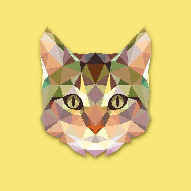 Poster Gato Cat