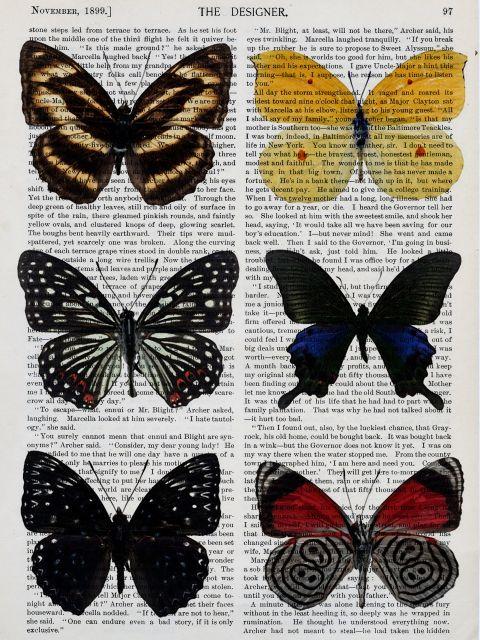 Poster Coleção Borboletas III