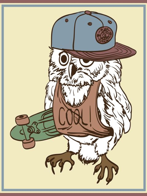 Poster Coruja skatista