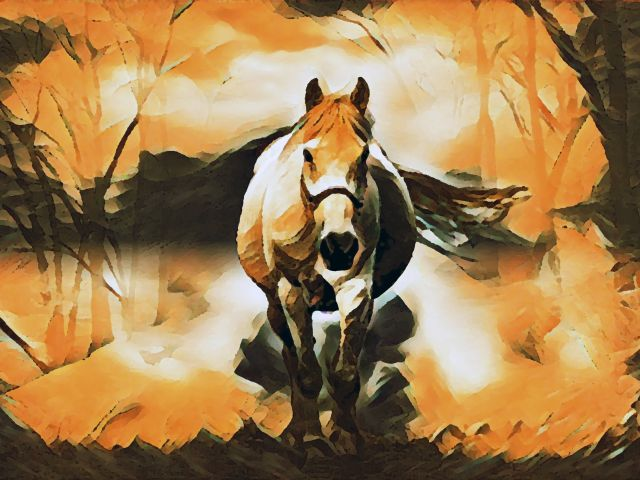 Poster Horse mirage