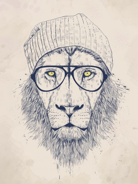 Poster Cool Lion