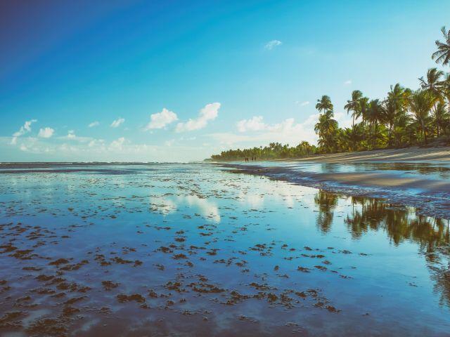 Poster Taipu de Fora   praia paisagem