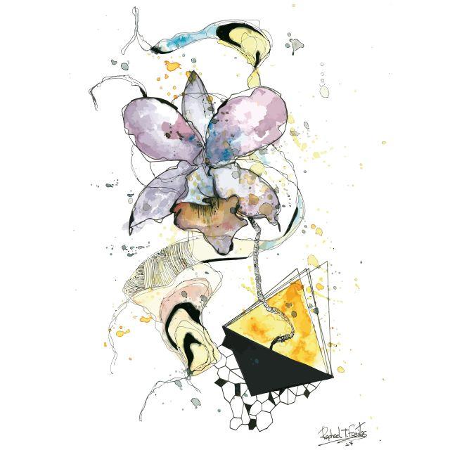 Poster Cattleya   aquarela