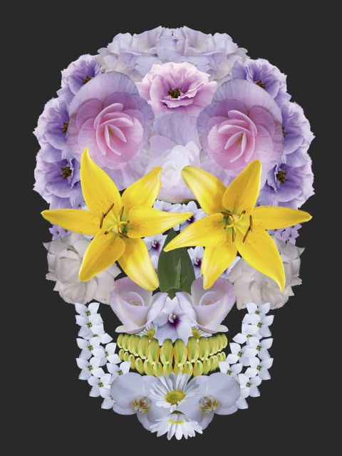 Poster Caveira floral   skull caveira