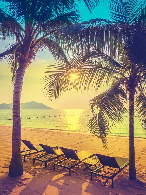 Poster Férias tropicais III