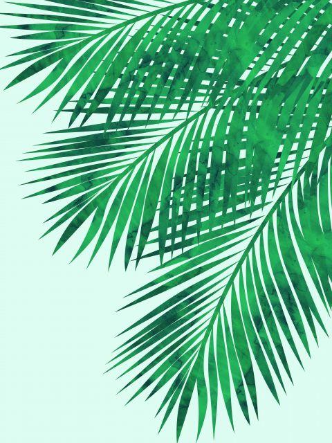 Poster Aquarela Folhas Tropicais VII