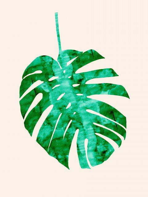 Poster Aquarela Folha Tropical V