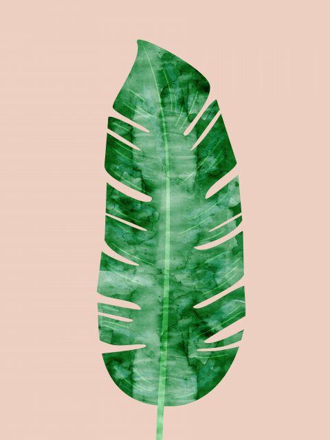 Poster Aquarela Folha Tropical IV
