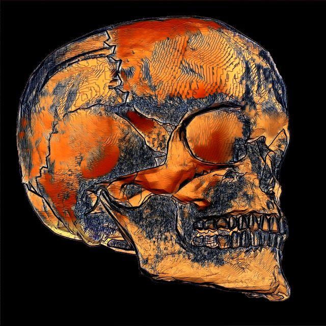 Poster Sketch Skull   Caveira