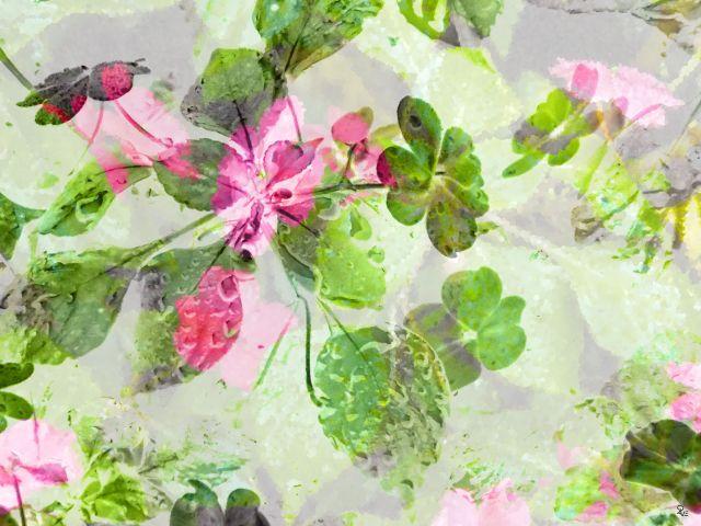 Poster Flores 2   flor flores