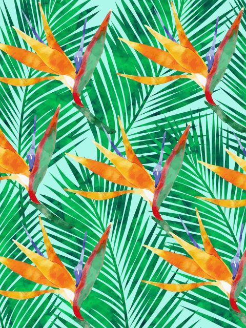Poster Padrão Tropical e Exótico VII