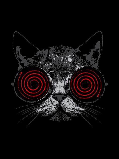 Poster Cat Black Crazy   gato