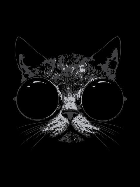 Poster Cat Black   gato