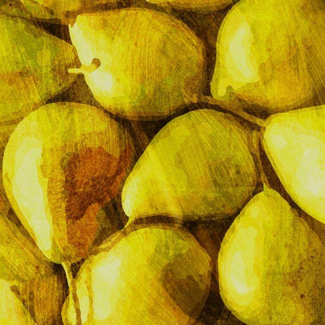 Poster Frutas - Pera