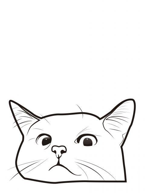 Poster Gato Escondido