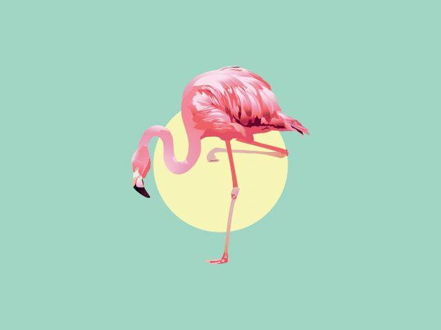 Poster Flamingo   verde flamingo