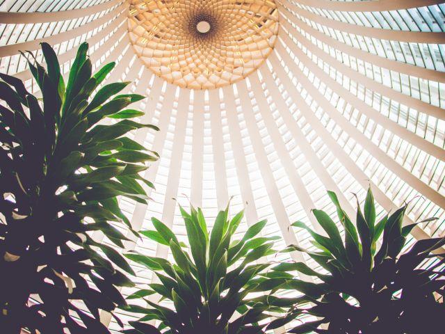 Poster Lelé em Brasília