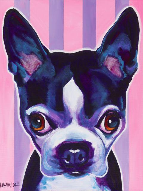 Poster Cãozinho Fashion   cão cachorro filhote animal rosa