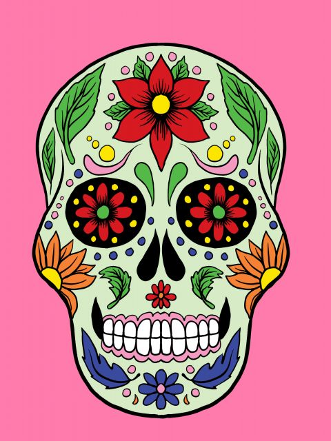 Poster Skull and pink