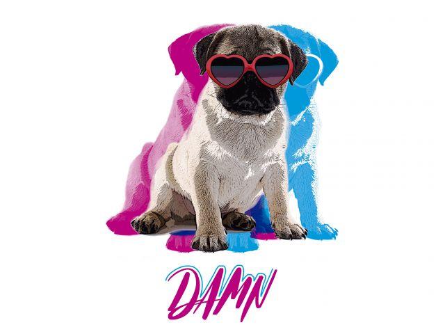 Poster Pug - Damn