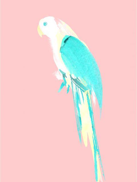 Poster Summer Parrot