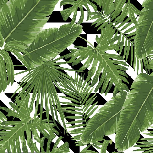 Poster Geometric Tropical