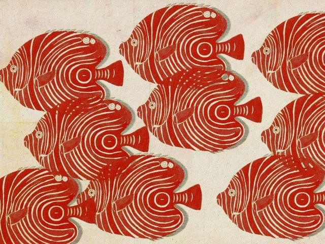 Poster Cardume Vermelho