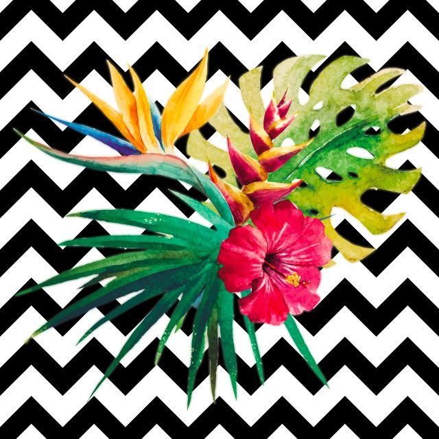 Poster Flores Tropicais