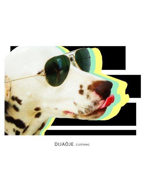 Poster Dia de Rock   cão cachorro