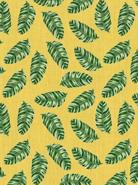 Poster Folhas tropicais IV