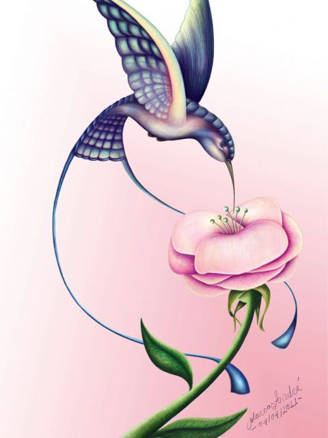 Poster A beleza do beija-flor