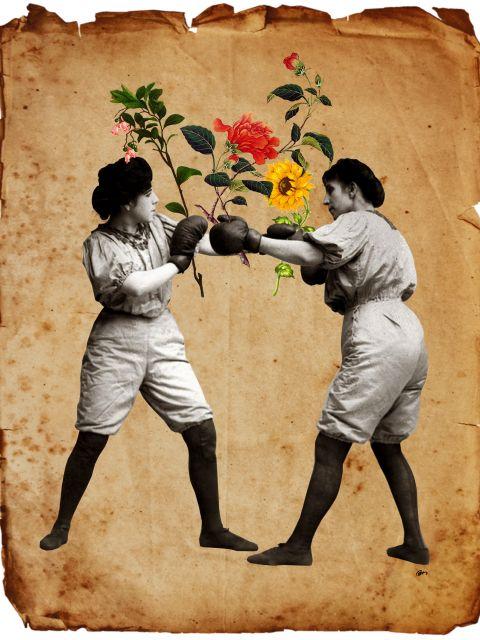 Poster Boxeadoras   mulher mulheres boxe