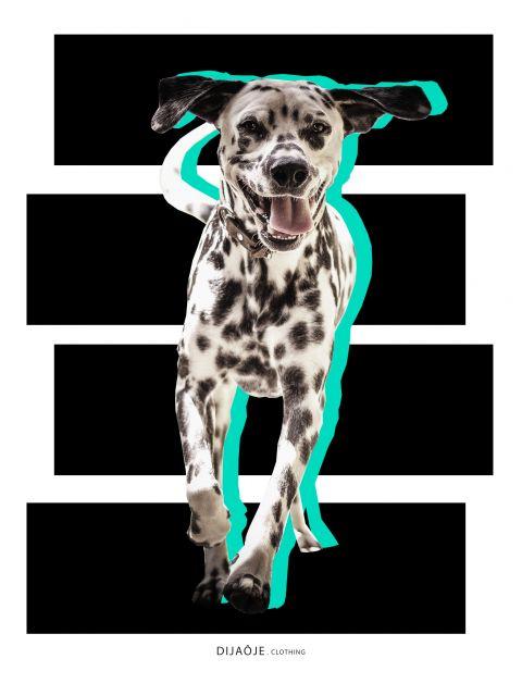 Poster Bart   cão cachorro