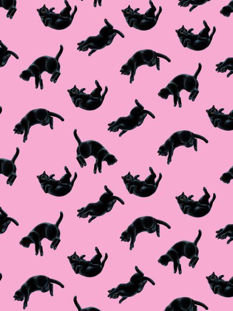 Poster Padrão de Gatos Pretos