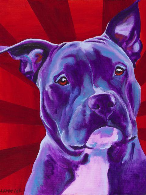 Poster Cão Pop   cão cachorro animal