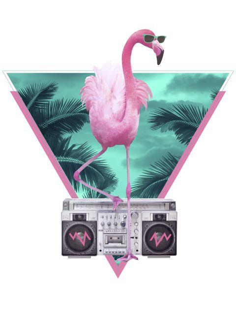 Poster Miami Flamingo