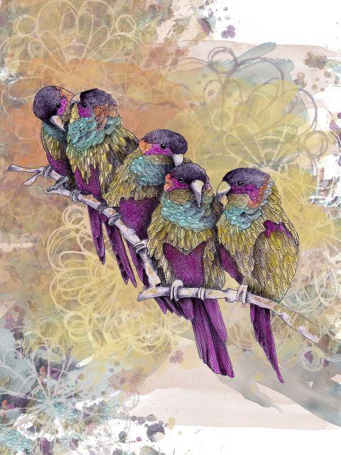 Poster Purple Parrots