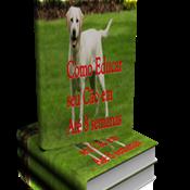 Como Educar o Seu Cão em Até 8 Semanas